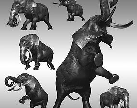 3D model realtime Male Elephant