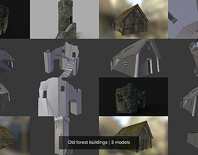Old forest buildings 3D