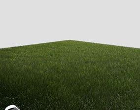 3D Dynamic Grass 3