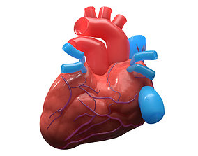 3D Human Heart Model - VR AR low-poly realtime