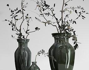 Dried Olive branch decor glass vase 3D model