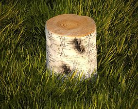 Birch stump 3D
