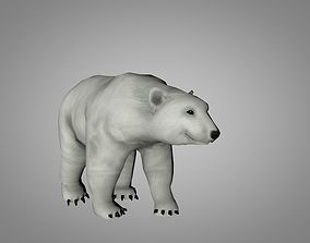 3D asset Polar White Bear