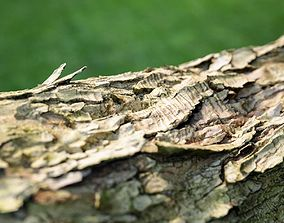 Photorealistic Bark Sample 3D asset
