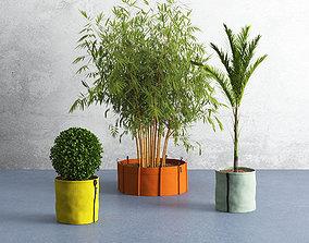 3D model VR / AR ready Bacsac and plants