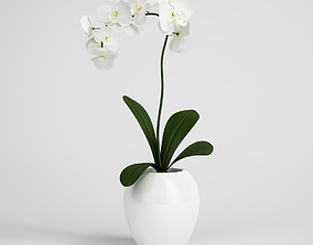 leaves CGAxis flower 3D model
