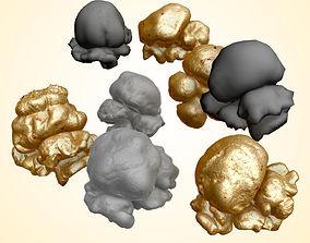 3D model Popcorn Kernels