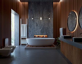 luxury Bathroom Interior design 3D