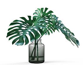 3D model Monstera vase
