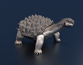 Turtle insect 3D rigged