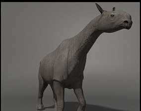 Indricotherium 3D - Pre-historic mammal animated