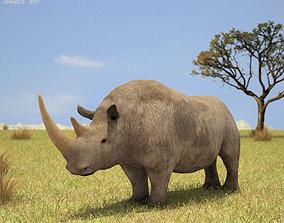 Woolly Rhinoceros 3D model