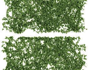3D Ivy walls 2 models