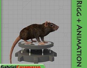 3D model Common Rat