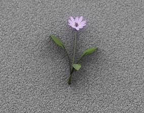 3D model Violet Flower - Verion 3 - Object 23