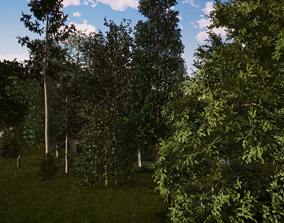 VR / AR ready Very realistic 3d Trees collection for 2