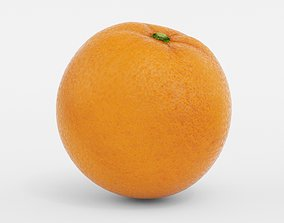 3D model grapefruit Orange Fruit