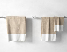 Towels on Racks 3D