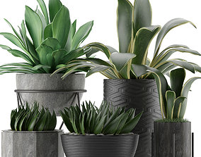 3D model bed Plants Collection 15