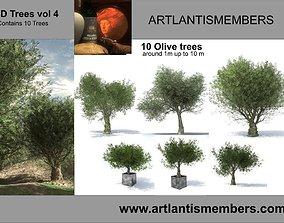3D model tree vol 4