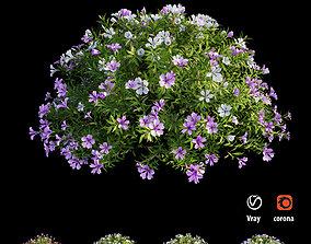 Plant Flower set 19 3D