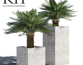 Artificial Cycas Palm in RH pot 3D
