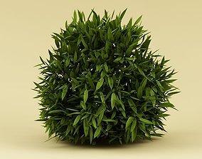 3D Bush 02