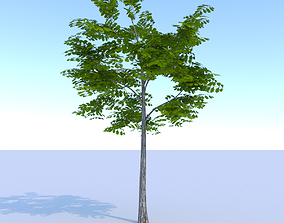 Oak Summer Low Poly 3D model