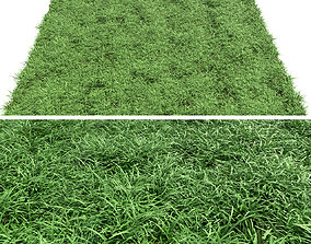 Green lawn 3D model