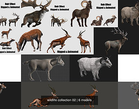 3D wildlife collection 02