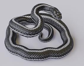 Rigged Black White Snake Rigged 3D model