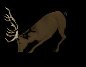 Rigged Deer 3D asset