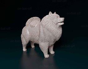 3D print model Keeshond print