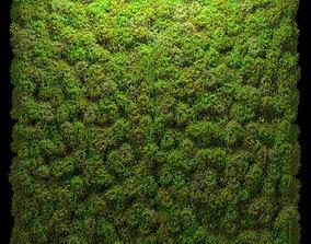 Stabilized moss wall panels 3D