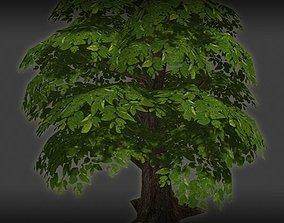 Big Cherry Tree 3D model