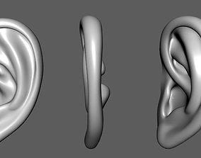 Ear 01- 3D model