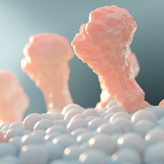Biorender 2 - Generated Proteins