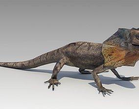 3D model Frill-Necked Lizard