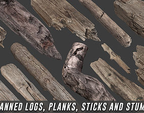 3D asset Scanned Logs Planks Sticks and Stumps