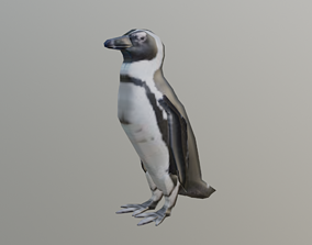 realtime 3d cape penguin model