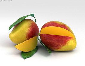 3D model indica Mango