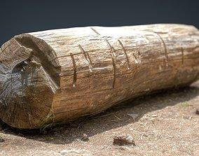 Dead trunk 5 3D asset
