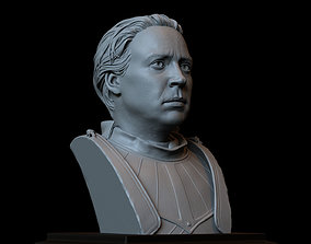 Brienne of Tarth from Game of Thrones Bust 3D print model