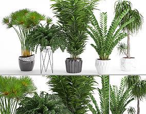 Houseplant 27 3D model