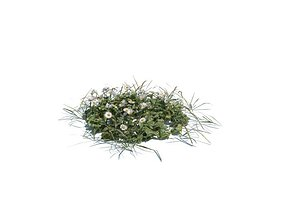 Grass And Wildflowers 3D