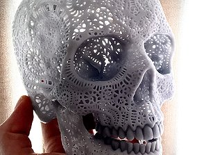 3D printable model Filigree Anatomical Skull