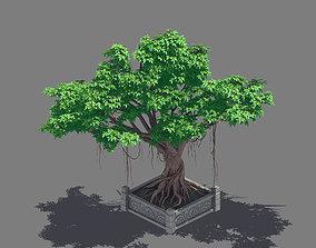 Plant - banyan tree 15 3D model