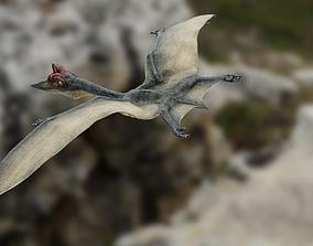 3D asset Quetzalcoatlus - Cretaceous Pterosaur Flying 1