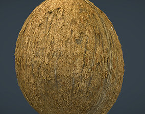 3D model VR / AR ready Coconut