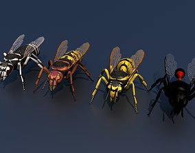 Wasp Pack 4 in 1 Vespula 3D